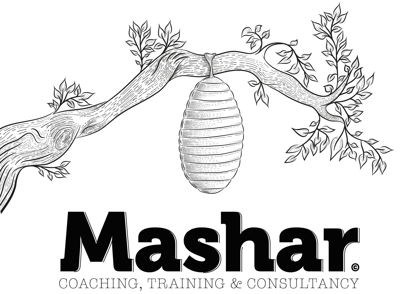 Mashar Coaching & Training